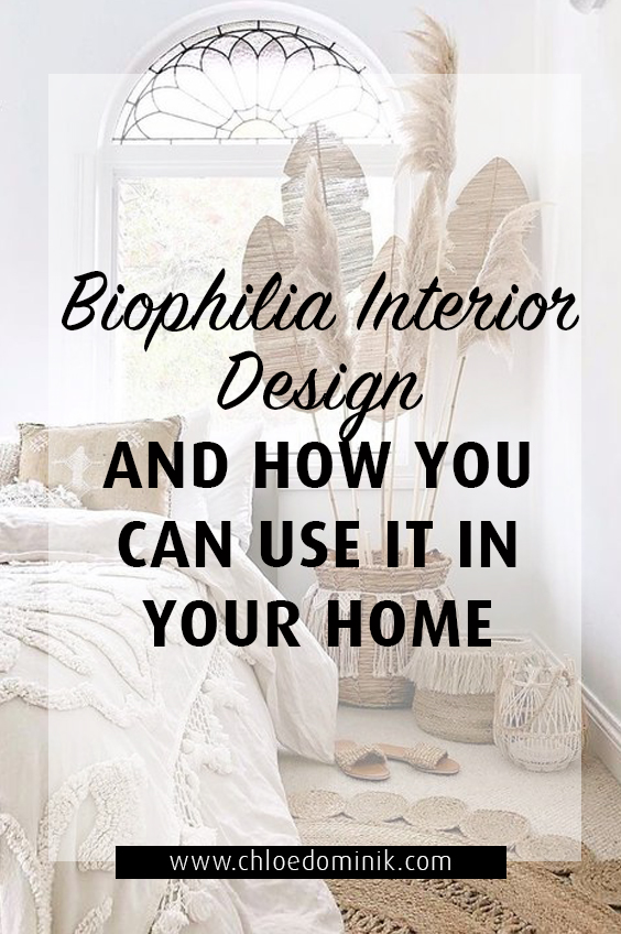Biophilia Interior Design and How You Can Use It In Your Home